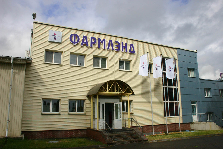 Буквы и логотип